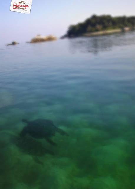 belitung 12 - Belitong, Surga buat pencinta pantai !!
