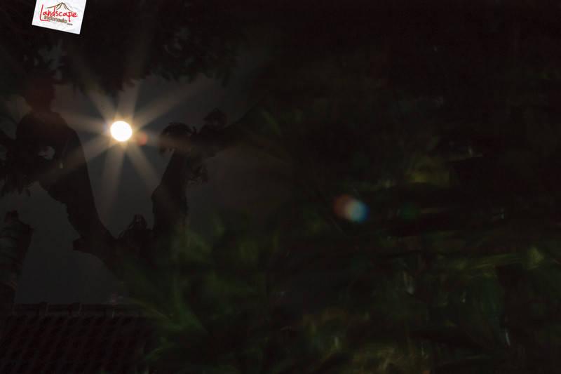 bulan purnama 1 - Memotret Milky Way di depan rumah