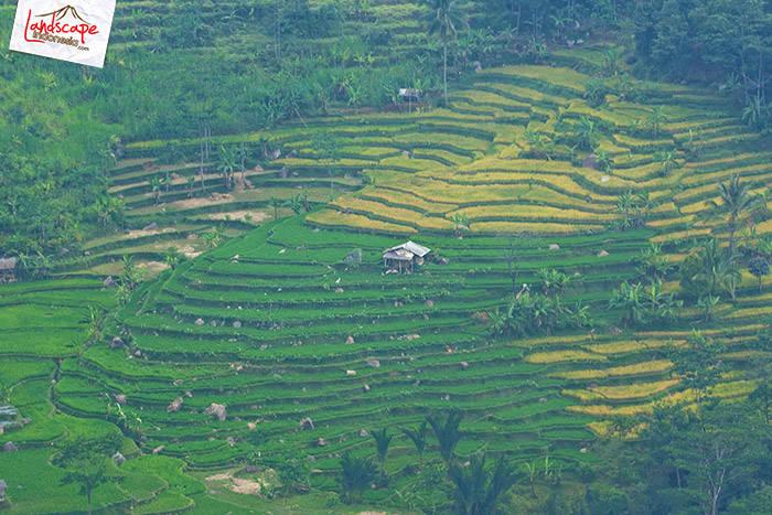 curug bogor 0 bukit panorama 1 - Sepenggal Cerita Explore Curug Bogor