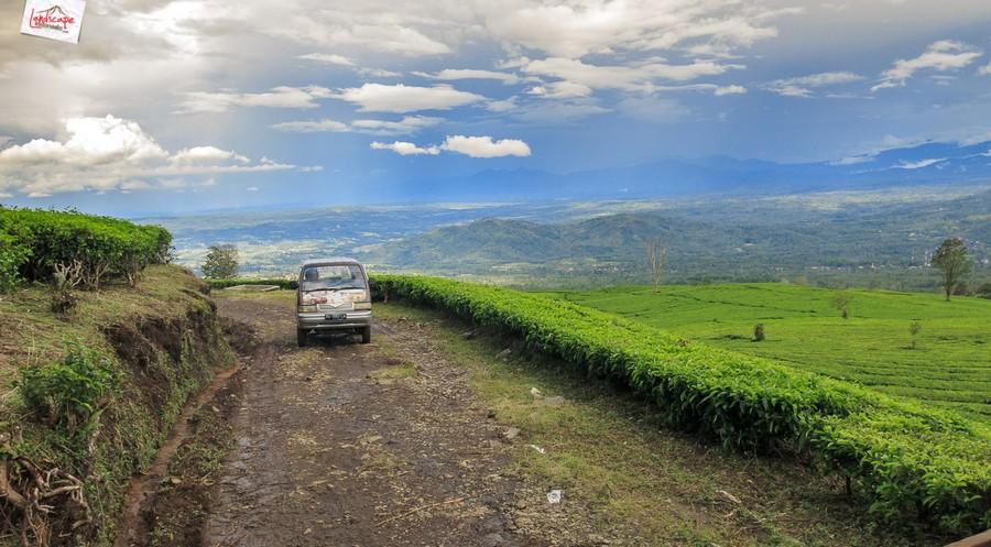 dempo 7 - [Gunung Dempo #1] Menuju Kampung 4