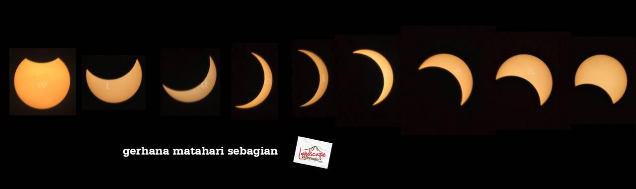 gerhana matahari 1 - mengamati gerhana matahari sebagian di tepi sawah