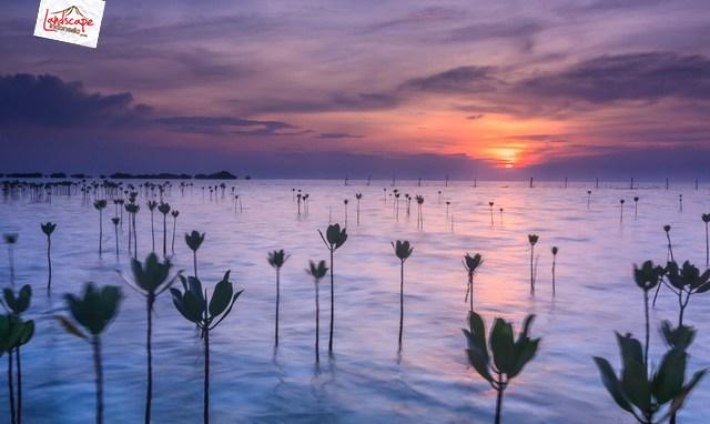 kemping pulau seribu 1 - [on progress] Ebook : Sejenak Melupakan Rutinitas