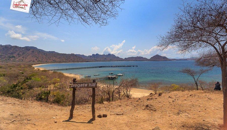 komodo pesonaindonesia 21 tn - Bertemu Sang Naga di pulau Komodo