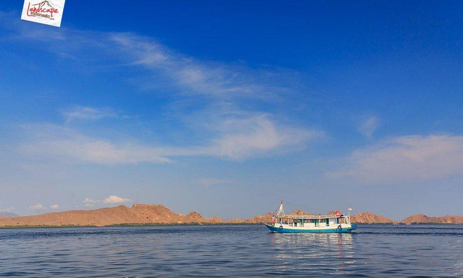 komodo pesonaindonesia 3 tn - Bertemu Sang Naga di pulau Komodo