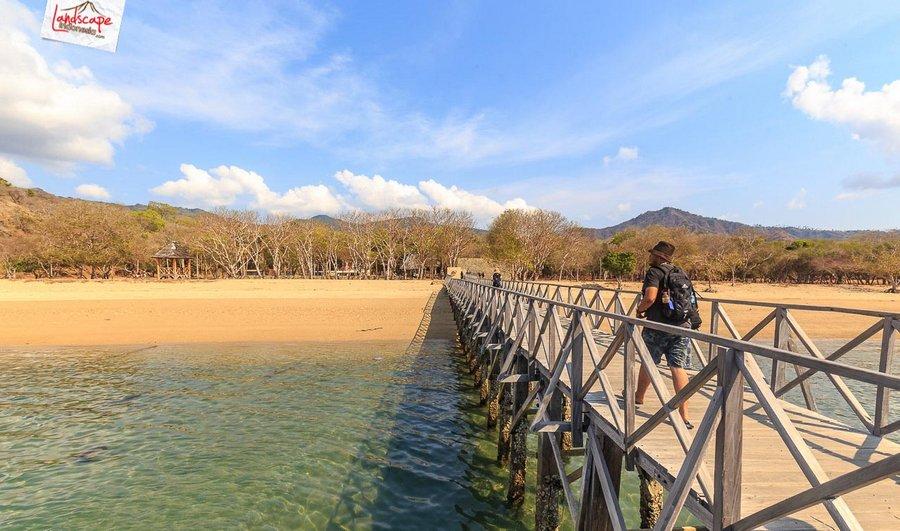 komodo pesonaindonesia 4 tn - Bertemu Sang Naga di pulau Komodo