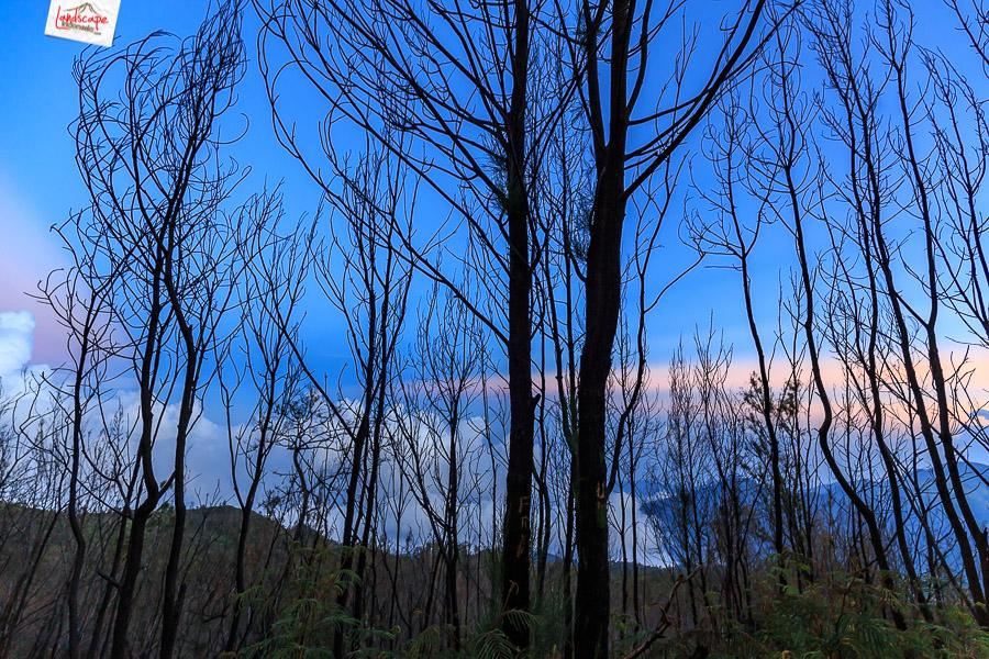 lawu 360 6 - Mendokumentasikan Panorama 360 Gunung Lawu (1)