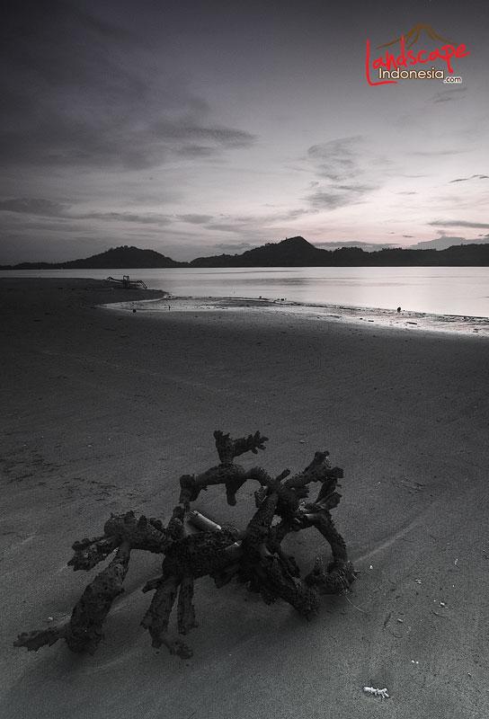 lombok barat 11 - lombok (still) hidden paradise - hari ke 4 - snorkling time