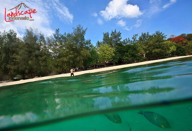 lombok barat 43 - lombok (still) hidden paradise - hari ke 4 - snorkling time