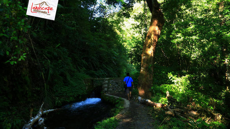 lombok explore chapter3 14 - Tiu kelep waterfall - Explore Lombok 2013 (3)