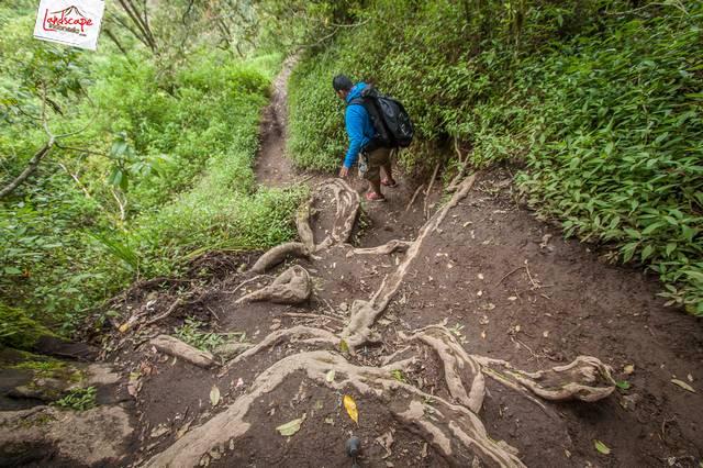 merbabu 14 - Merbabu Kemping Ceria, Maret 2015, sebuah catatan perjalanan