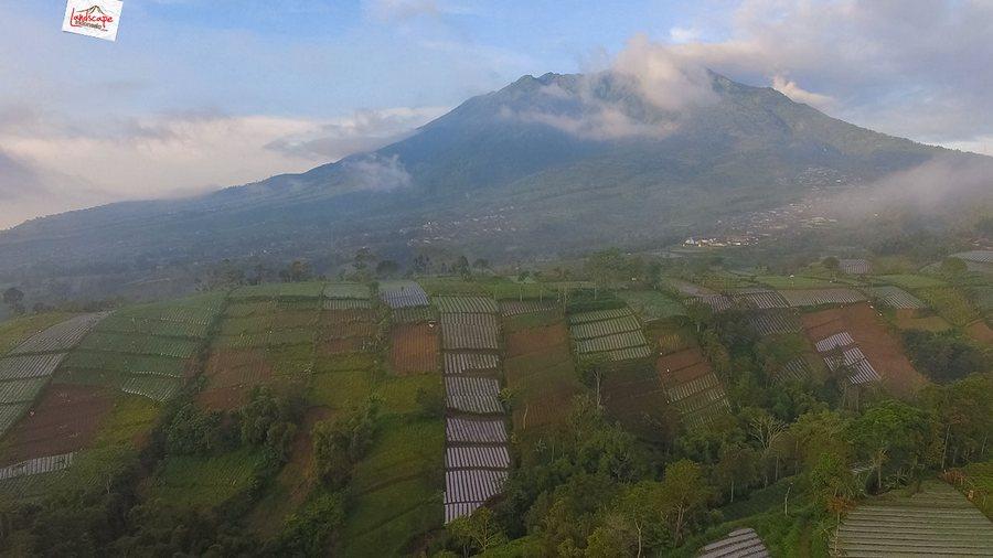 selo drone 8 - Selamat Pagi Merapi Merbabu