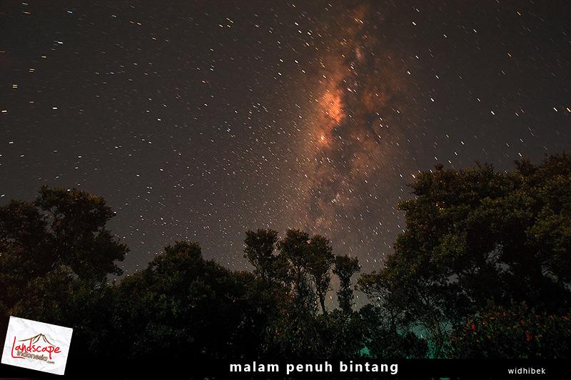 malam bertabur bintang di gunung gede