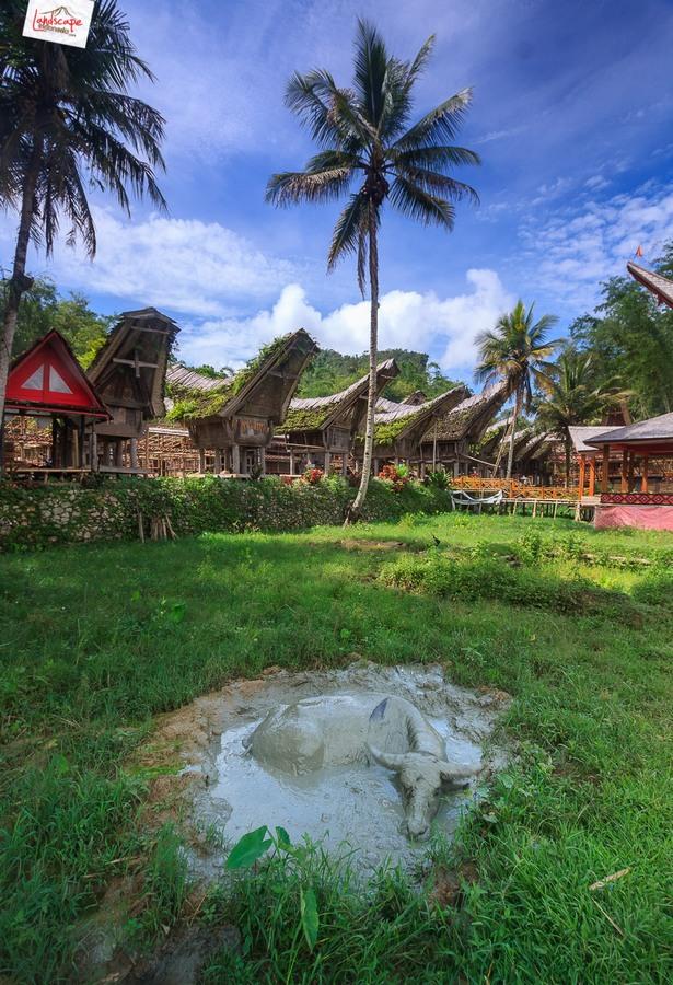 toraja 01 - Toraja - Budaya di Atas Awan