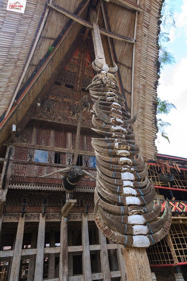 toraja 03 - Toraja - Budaya di Atas Awan