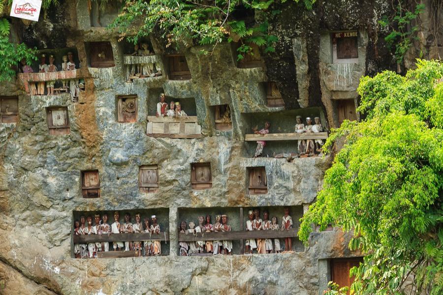 toraja 05 - Toraja - Budaya di Atas Awan
