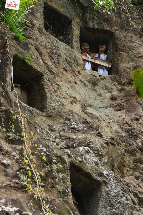 toraja 07 - Toraja - Budaya di Atas Awan