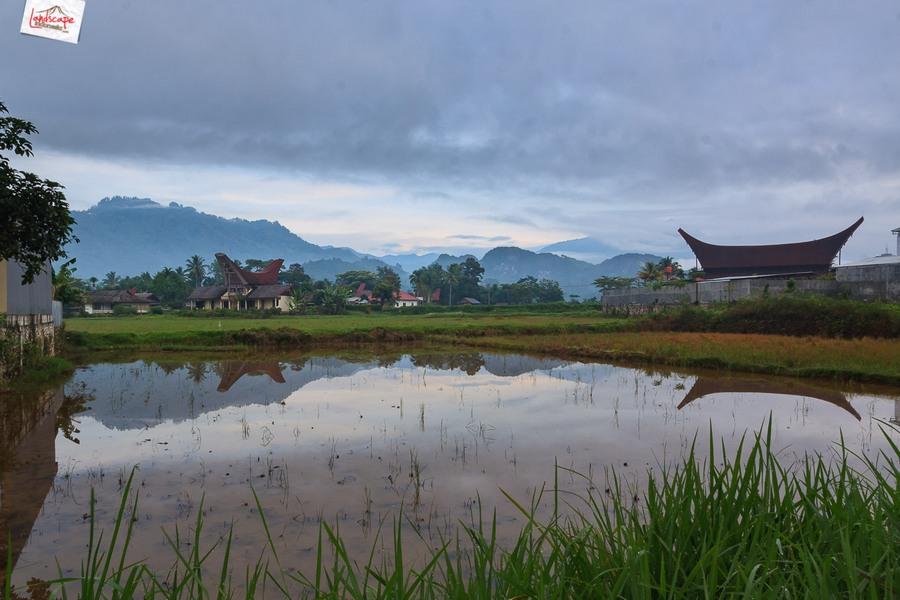 toraja 14 - Toraja - Budaya di Atas Awan