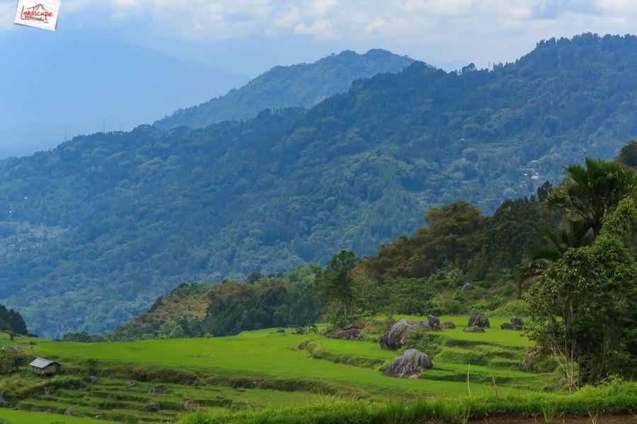 toraja 15 - Toraja - Budaya di Atas Awan