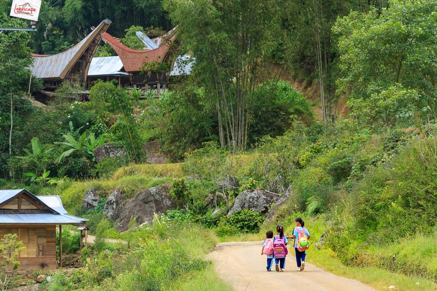 toraja 16 - Toraja - Budaya di Atas Awan