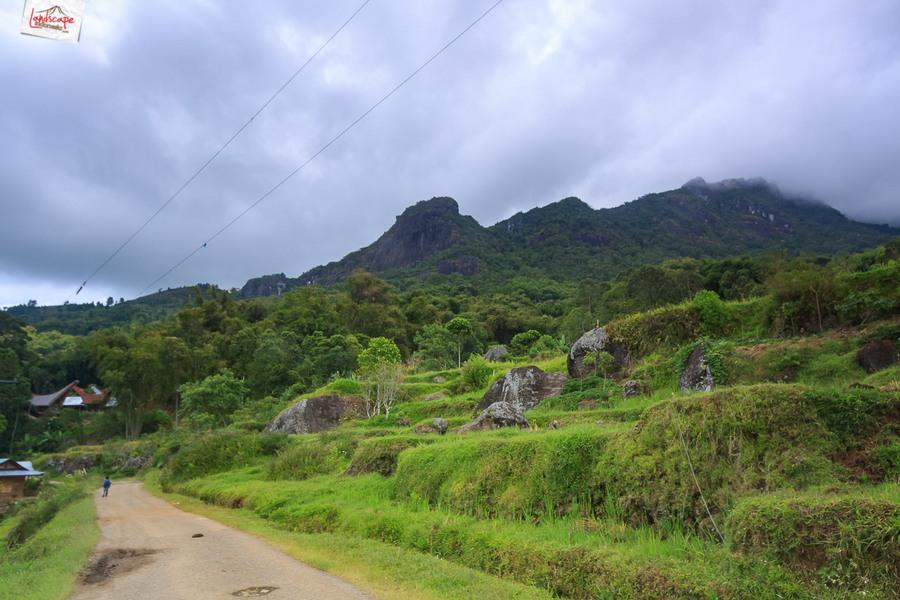 toraja 17 - Toraja - Budaya di Atas Awan