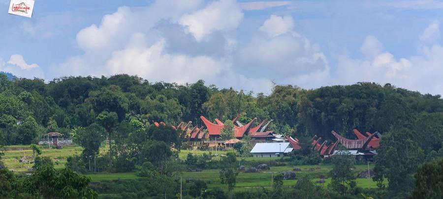 toraja 19 - Toraja - Budaya di Atas Awan