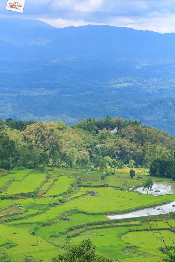 toraja 20 - Toraja - Budaya di Atas Awan