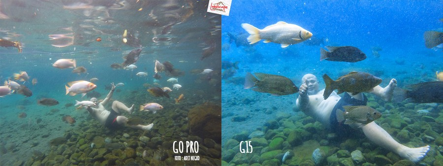 underwater3 7 - Test #3 Underwater Foto : Go Pro dan G15