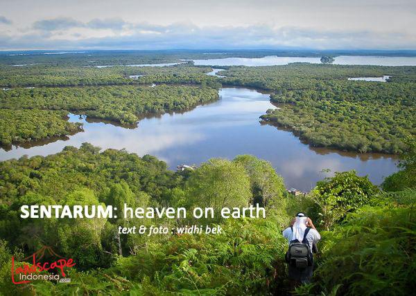 danau sentarum 0c - Danau Sentarum, Heaven on Earth