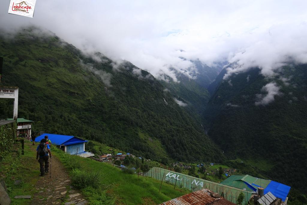 nepal chomrong 1 - Annapurna Basecamp hari kelima : Chomrong - Bamboo