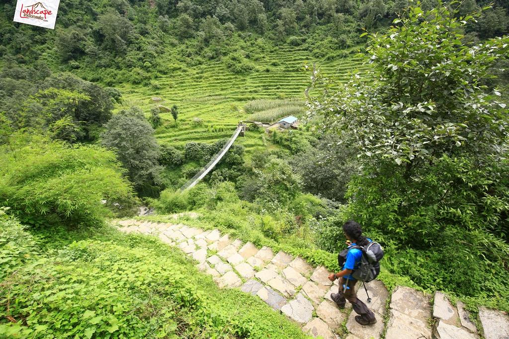 nepal chomrong 3 - Annapurna Basecamp hari kelima : Chomrong - Bamboo