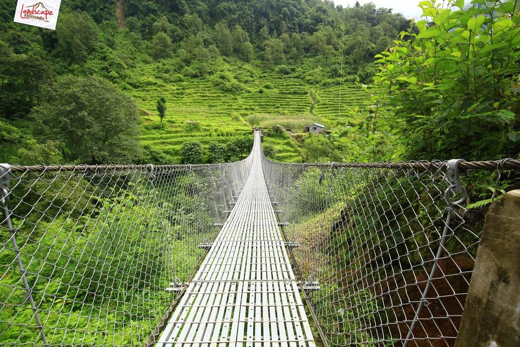 nepal chomrong 4 - Annapurna Basecamp hari kelima : Chomrong - Bamboo