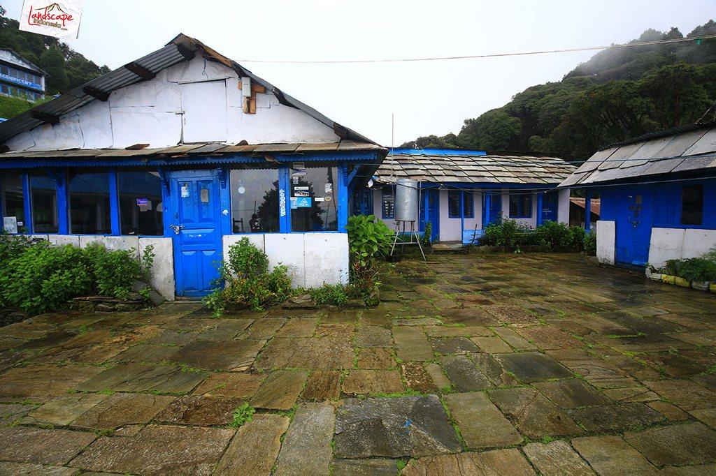 nepal tadapani 1 - Annapurna Basecamp : Tadapani - Chomrong (hari keempat)