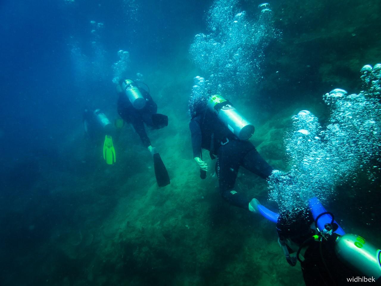bawah laut 2 - Selamat Datang di Bawah Laut