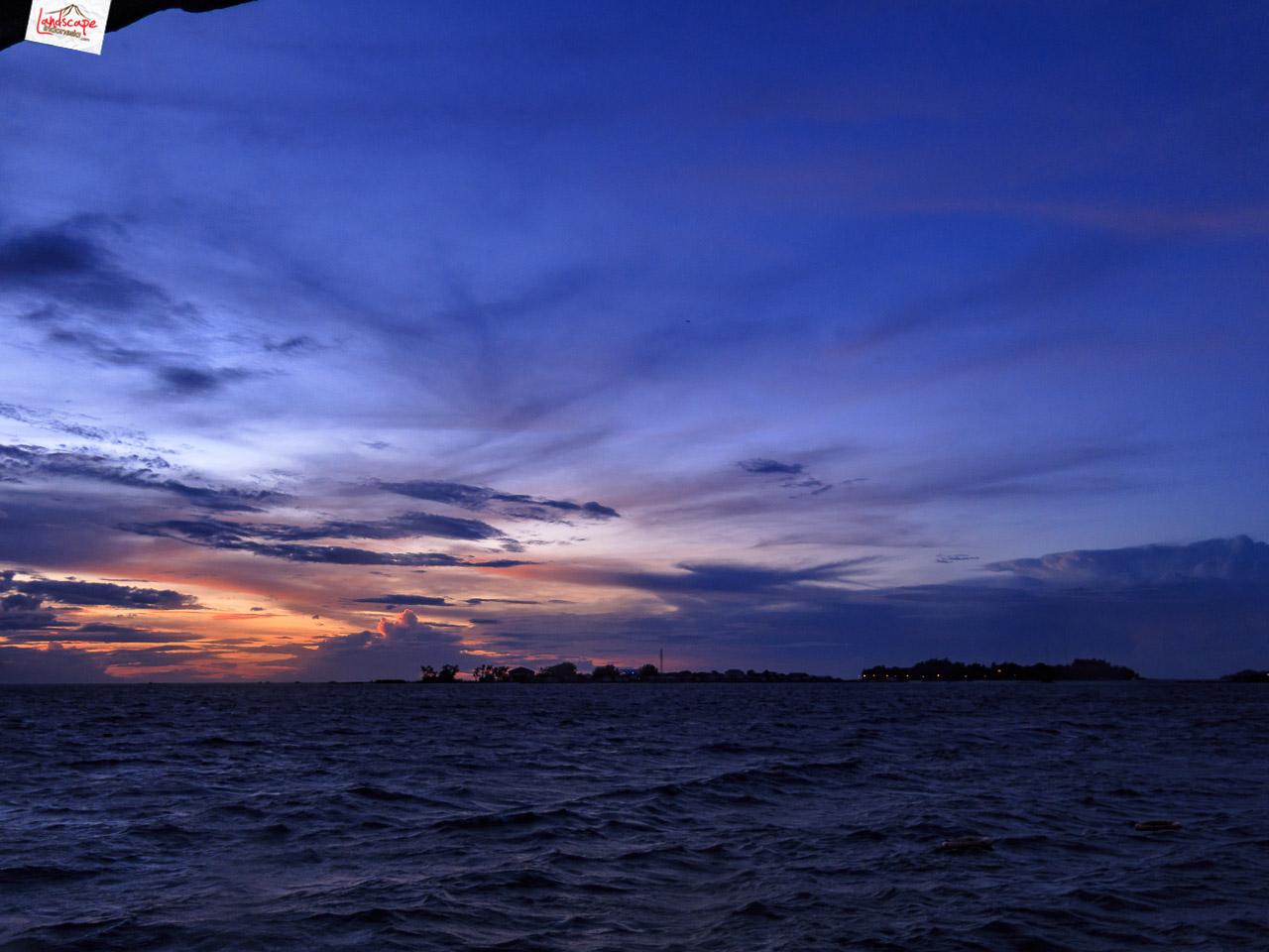 night dive 6414 1 - Night Dive di Pulau Pramuka