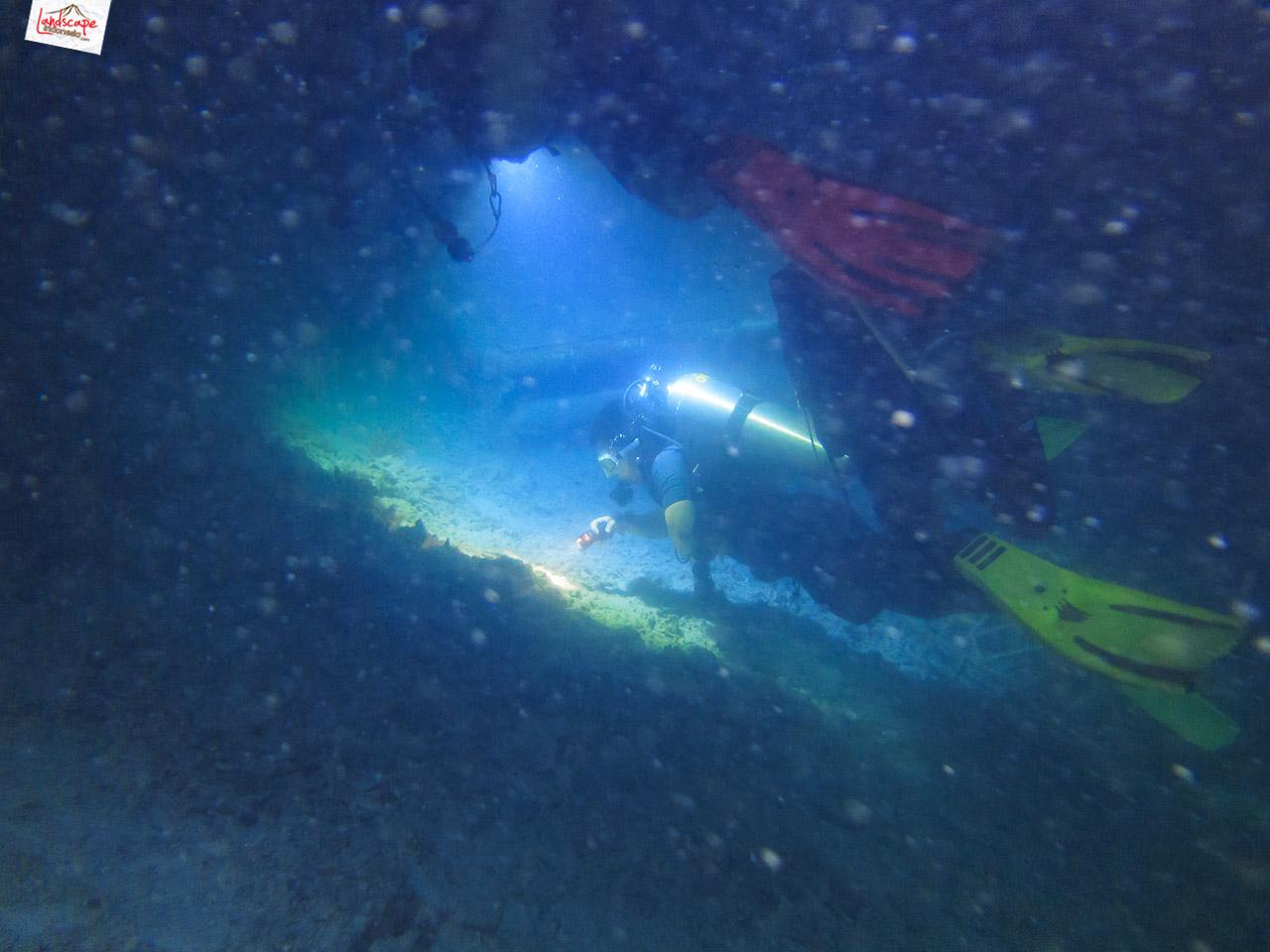 night dive 6679 - Night Dive di Pulau Pramuka