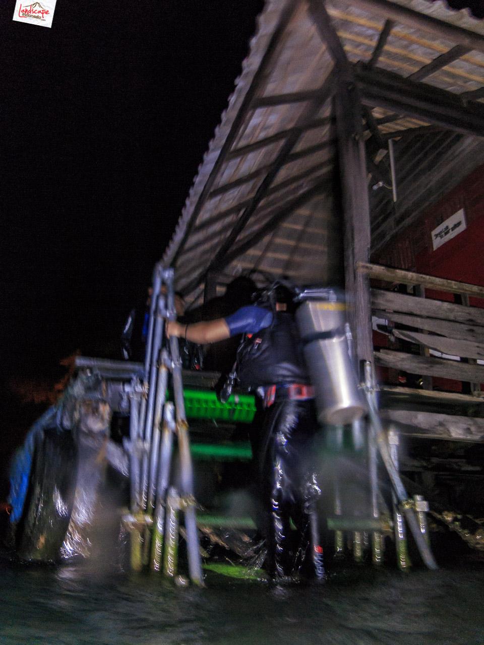 night dive 6700 - Night Dive di Pulau Pramuka