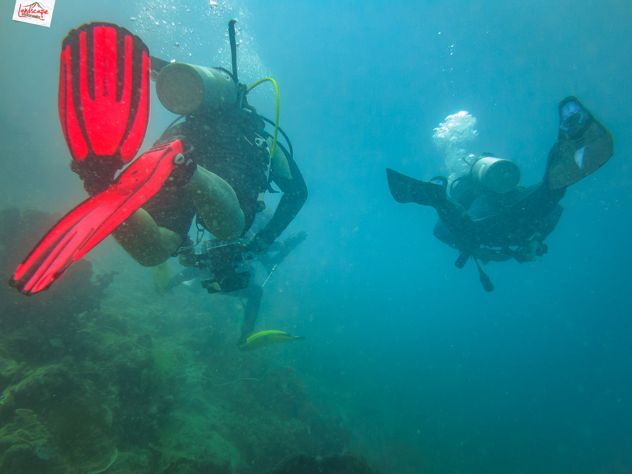 wreck dive kapal ahok 2 - Wreck Dive Kapal Ahok
