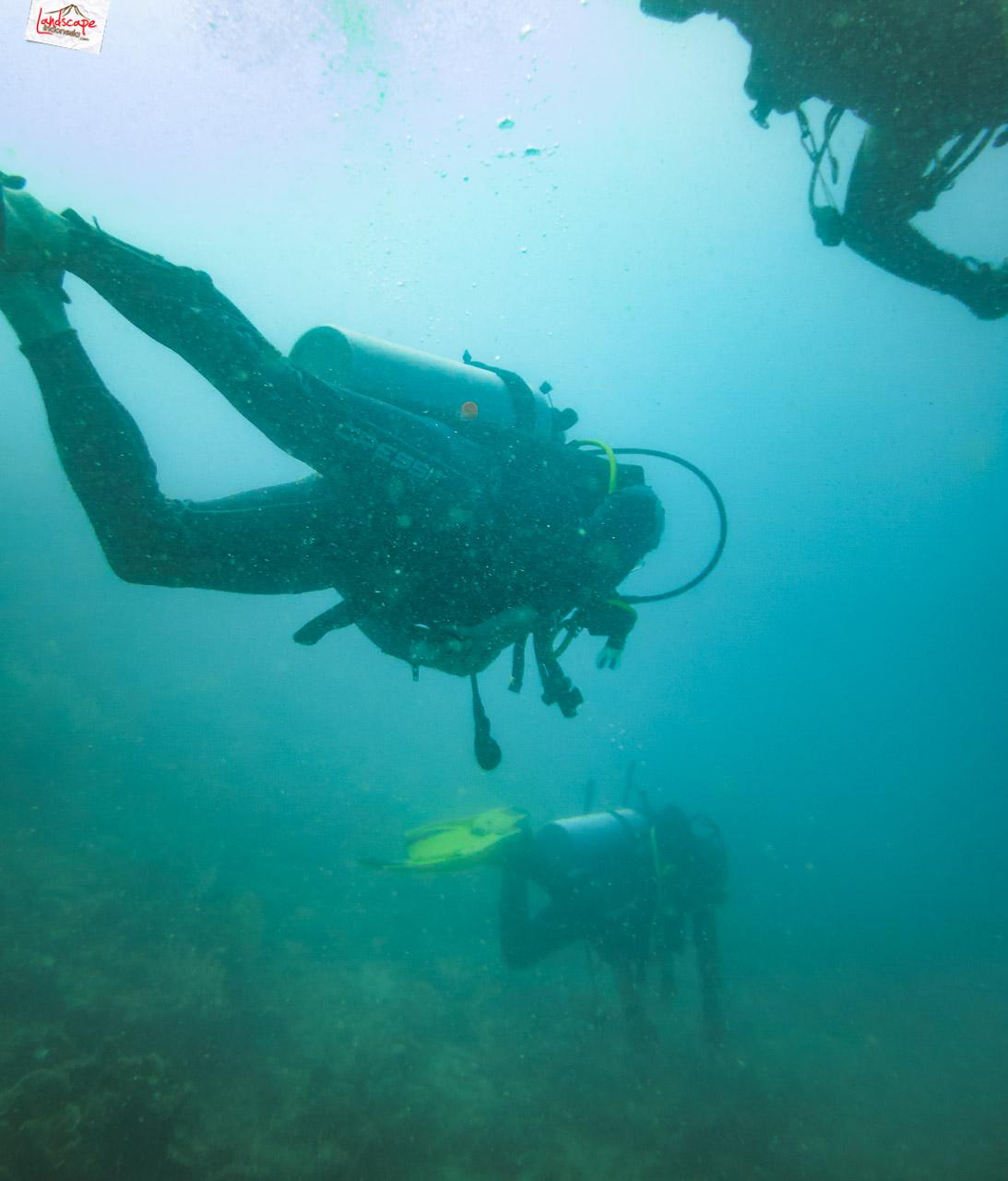 wreck dive kapal ahok 3 - Wreck Dive Kapal Ahok