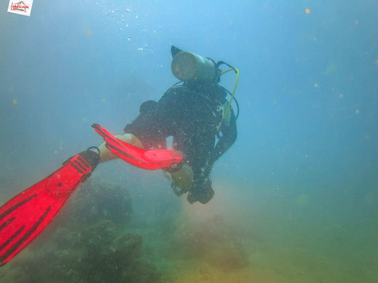 wreck dive kapal ahok 5 - Wreck Dive Kapal Ahok