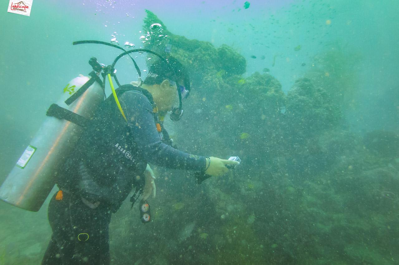 wreck dive kapal ahok 6 - Wreck Dive Kapal Ahok