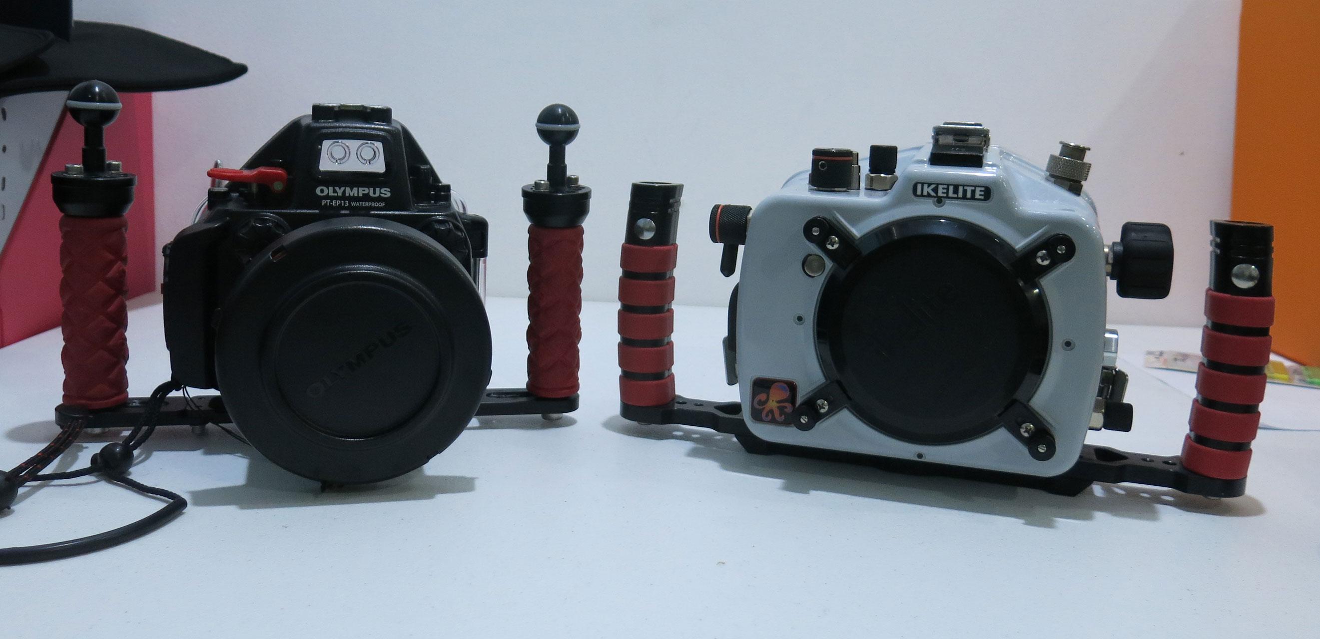 memilih peralatan untuk fotografi underwater 03 - Memilih Peralatan untuk Fotografi Underwater