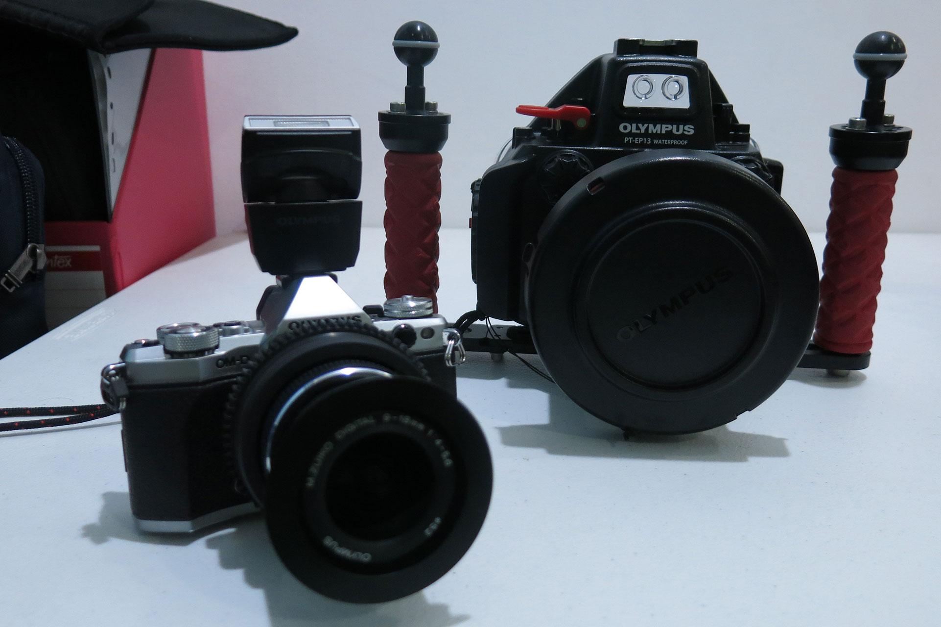 memilih peralatan untuk fotografi underwater 3 - Memilih Peralatan untuk Fotografi Underwater