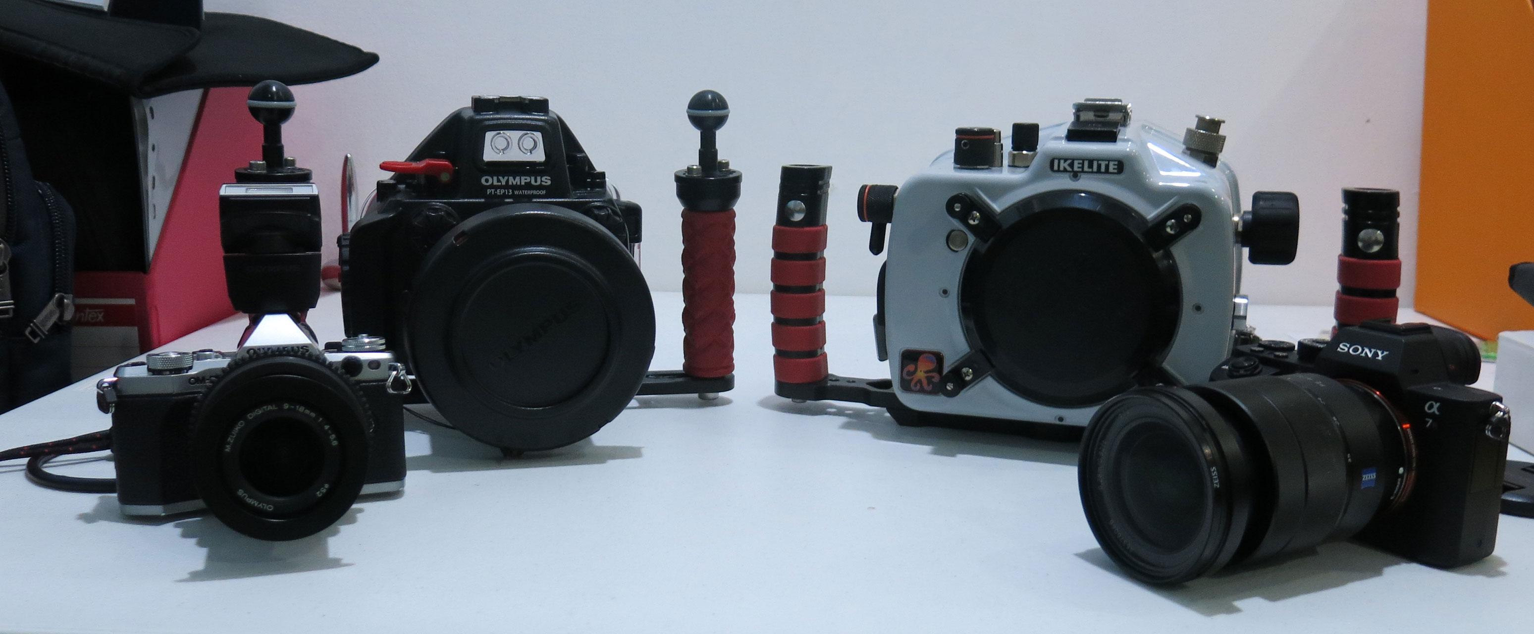memilih peralatan untuk fotografi underwater 4 1 - Memilih Peralatan untuk Fotografi Underwater