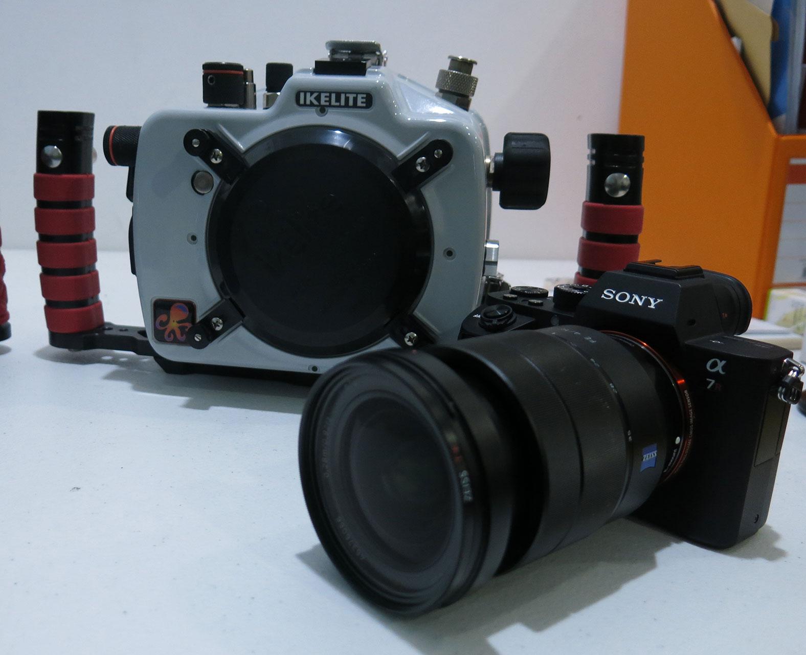 memilih peralatan untuk fotografi underwater 5 - Memilih Peralatan untuk Fotografi Underwater
