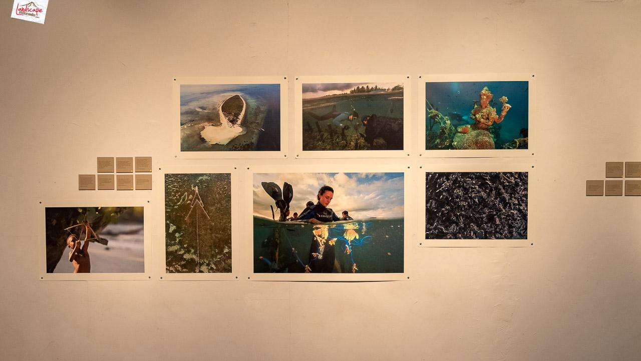 jelajah terumbu karang 4 1 - Pameran Foto Jelajah Terumbu Karang Kompas