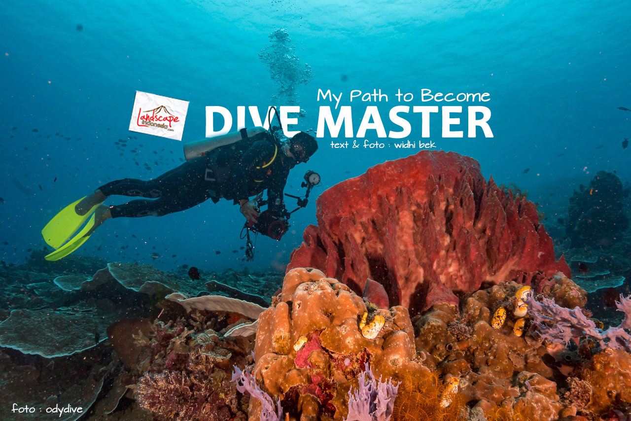 path become divemaster