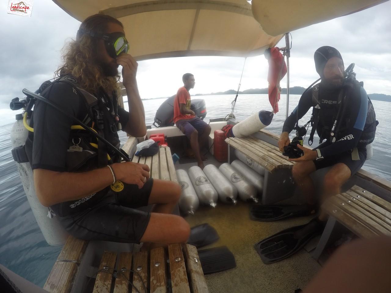 diving di arborek 1 - Diving di Arborek, Raja Ampat