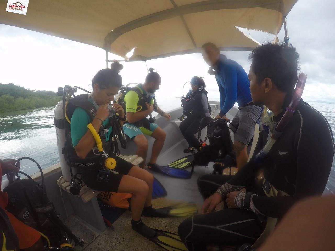 diving di arborek 2 - Diving di Arborek, Raja Ampat