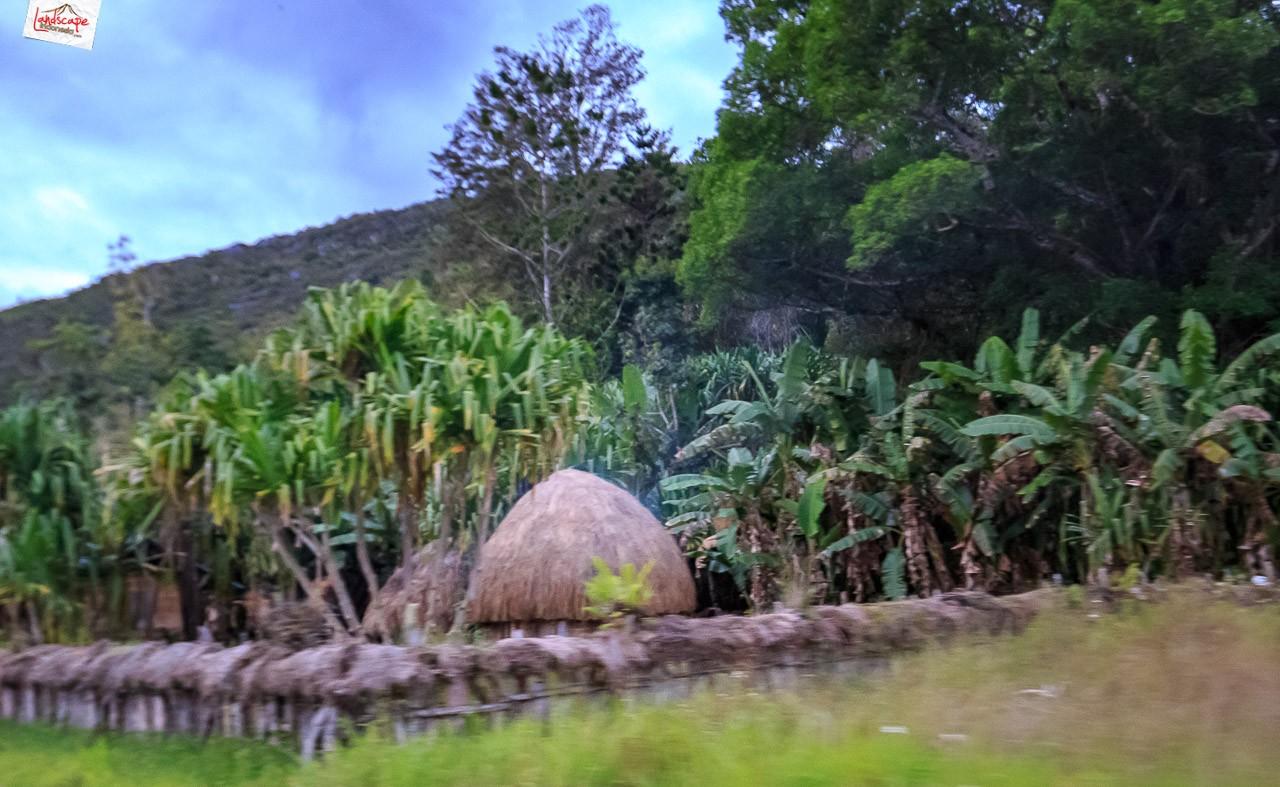 jalur darat wamena yalimo 7 - Melintas Jalur Darat Wamena - Yalimo