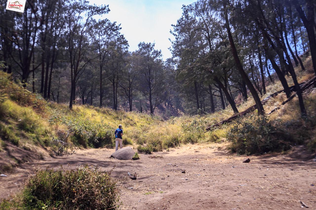 gunung lawu jalur candi cetho 12 - Pendakian Gunung Lawu Jalur Candi Cetho